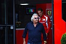 Webber says new Red Bull 'very strong' - Briatore