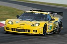Corvette Racing at Baltimore: A Grand Prix, indeed