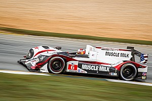 ALMS Qualifying report Front row start for final round of 2013 for Muscle Milk Pickett Racing team