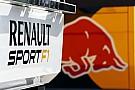 Renault 'definitely' 2015 engine supplier - Marko