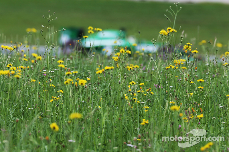 Mystery, mystery: who are those investors behind the Caterham buyout?