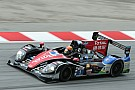 Ho-Pin Tung to race again in 24 Hours Le Mans