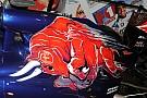 Toro Rosso: ecco il San Valentino di Sainz e Verstappen
