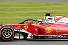 """汉密尔顿希望F1不会为搁置""""光环""""决定后悔"""
