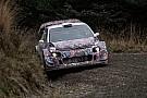 WRC Мік: У WRC-2017 не буде домінуючої сили