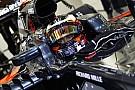 Formule 1 Vandoorne -