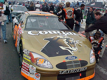 #9 Cougar car hood