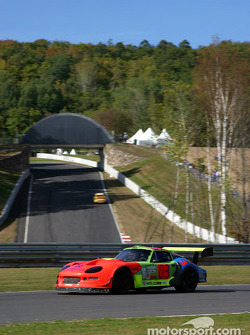 Marcos Racing USA Marcos Mantis
