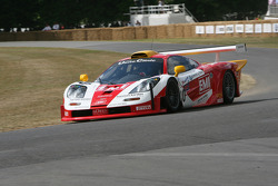 1996 McLaren BMW F1 GTR Longtail: Paul Knapfield