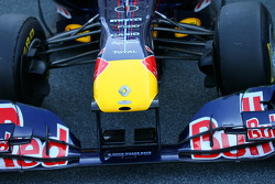 Front wing and nose of the red Bull