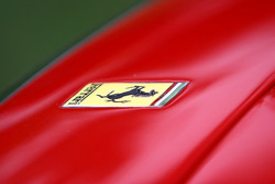 Ferrari badge deatil