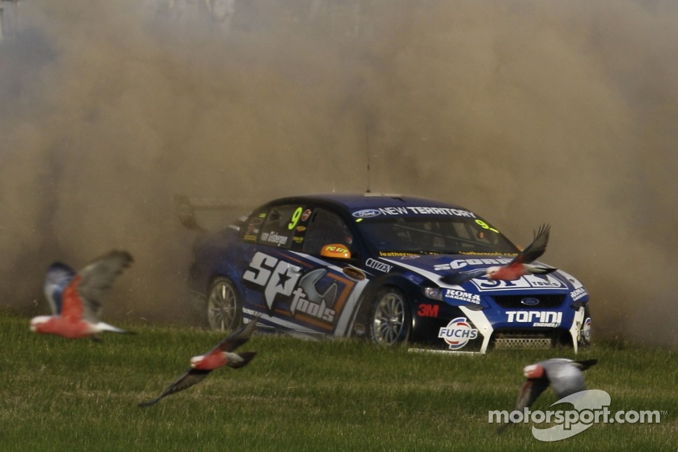 Shane van Gisbergen spins into the grass as birds clear the way