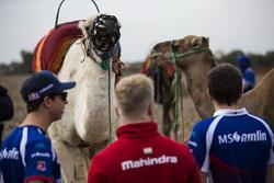 Antonio Felix da Costa, Amlin Andretti Formula E Team und Felix Rosenqvist, Mahindra Racing