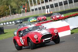 Race TT race: Lynn-Wilson, Ac Cobra Le Mans Coupe