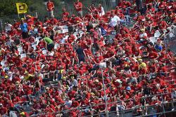 Valentino Rossi fans
