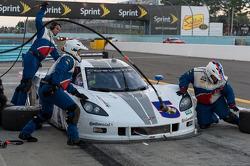 #5 Action Express Racing Chevrolet Corvette DP: Terry Borcheller, David Donohue, Jordan Taylor