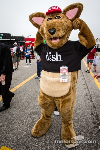 Dish mascot