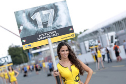Grid girl of Antonio Giovinazzi