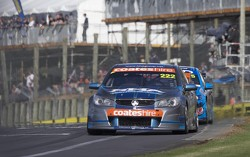 V8SUPERCARS: Nick Percat passes the Pukekohe grandstand