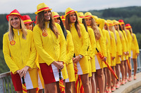 Shell grid girls