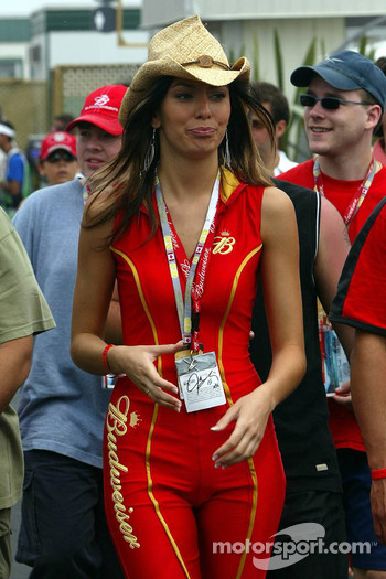 The stunning Budweiser girl