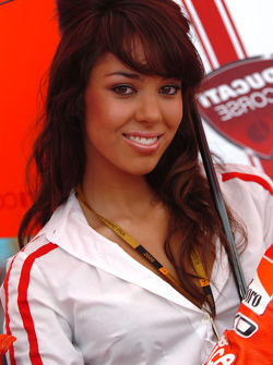 A lovely Ducati grid girl