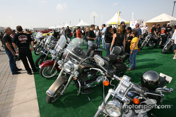 Harley Davidson bikes on display