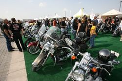 Harley Davidson bikes on display