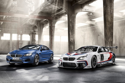 The BMW M6 GT3
