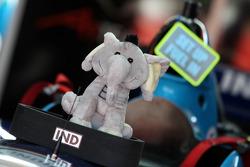 Team India mascot