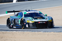 IMSA Photos - #44 Magnus Racing Audi R8 LMS: John Potter, Andy Lally