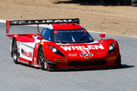 IMSA Foto - #31 Action Express Racing Corvette DP: Eric Curran, Dane Cameron