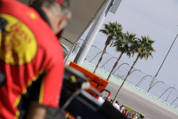 Palm trees rise above the garage area