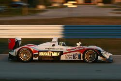 #6 Muscle Milk Team Cytosport Porsche RS Spyder: Greg Pickett, Klaus Graf, Sascha Maassen