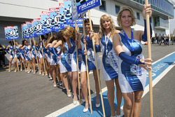 The charming grid girls