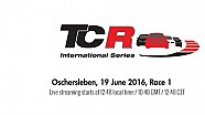 Live: TCR Oschersleben Race 1