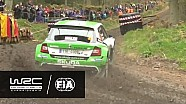 WRC 2 - Wales Rally GB 2016: WRC 2 HIGHLIGHTS/ Review