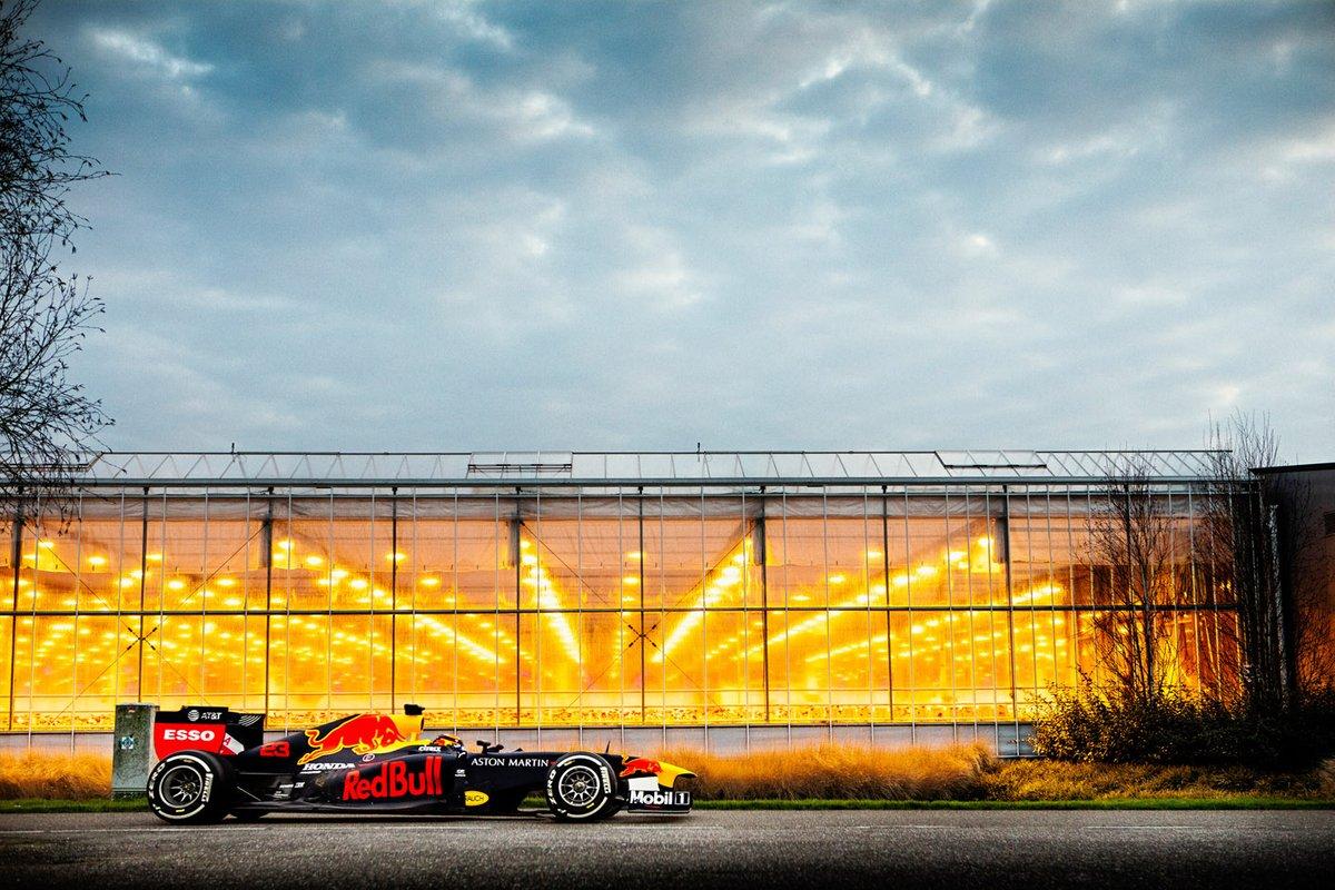 Viaje a Holanda con Red Bull