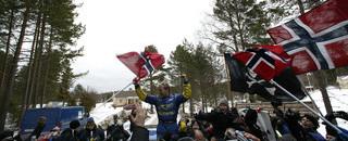 WRC Solberg takes Sweden as Gronholm, Loeb falter
