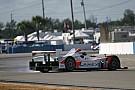 Marcelli Sebring race report