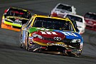 M&M's Racing: Kyle Busch Pennsylvania 400 Advance