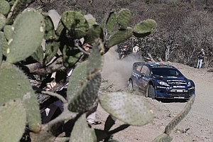 WRC Stage report Rally Mexico: M-Sport's midday quotes, day 3