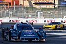 Front row start for Michael Shank Racing with Curb/Agajanian at Long Beach