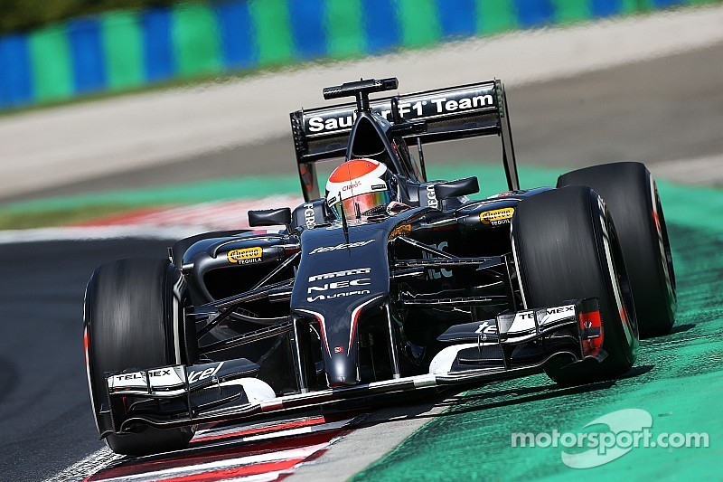 Different set-ups on both Sauber C33s were tested on Friday practice in Budapest