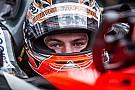 Verstappen chooses Red Bull over Mercedes