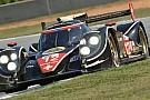 Dominio della Rebellion Racing alla Petit Le Mans