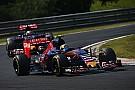 Toro Rosso croit au top 5 du championnat