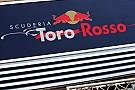 Atrasada, Toro Rosso testará com pintura provisória