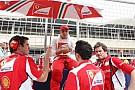 Webber Massa'nın yerini alır mı?