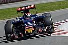 A Toro Rosso
